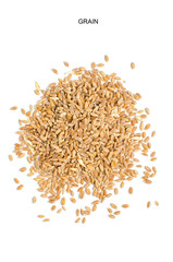 Wheat grain on white background.