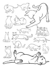 Cat animal line art. Vector, illustration. Good use for symbol, logo, web icon, coloring, mascot, sign, or any design you want.