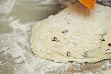 Fresh bread dough