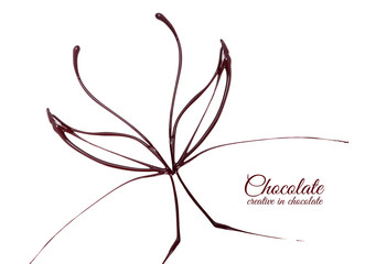 Chocolate in the form of a butterfly. Melted chocolate syrup on white background. Liquid chocolate on a white background.