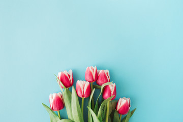 Beautiful bouquet of pink tulips on blue background. Top view, holiday greeting card, flat lay.