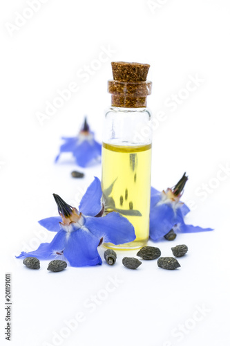 Borage oil borago officinalis flowers and seeds on white borage oil borago officinalis flowers and seeds on white background mightylinksfo