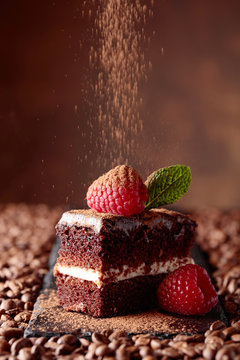 Closeup of chocolate cake with raspberry and mint .