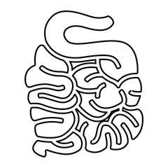 Organe Icon - Dünndarm