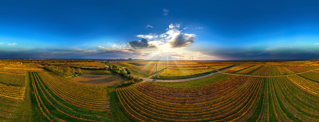 Luftbild Sonnenuntergang über den Weinbergen bei Worms Herrnsheim volle 360°