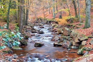 der Fluss Ilse bei Ilsenburg am Fuße des Brocken im Nationalpark Harz