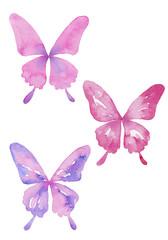 アゲハ蝶のセット 水彩イラスト