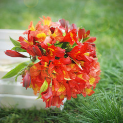 Red Orange Beautiful Alstromeria Lily Flower Bouquet Green Grass Natural background. toned. Spring Summer time. Square Image Instagram