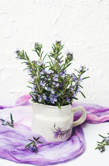 Rosemary branches in a vase on white background