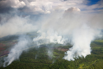 Wildfire in forest, aerial view