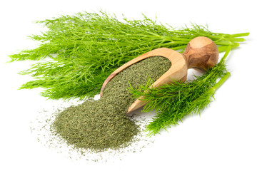 dried dill weed in the wooden scoop, with fresh dill weed, isolated on white