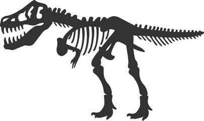 Tyrannosaurus Rex T.Rex Dinosaur Skeleton