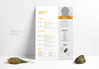 Resume Layout with Gray Sidebar