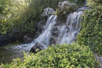 Jardín botánico Molino de Inca. Torremolinos, Málaga, España.