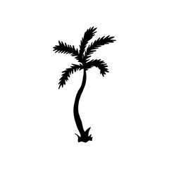 Vector Illustration. Palm icon. Hand draw tropical palm on white background