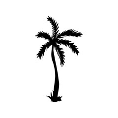 Vector Illustration. Palm icon. Hand draw tropical palm