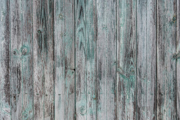 Old rustic wood painted white and green and blue colours background