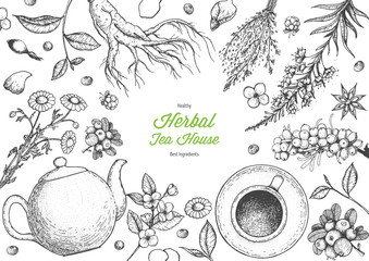 Herbal Tea shop frame vector illustration. Vector design with herbal tea ingredients. Hand drawn sketch collection. Engraved style.