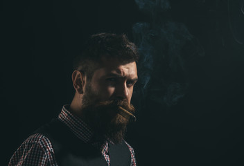 Silhouette of bearded man with cigar. Gentleman with beard and mustache smoke cigar. Smoldering cigars. Smoking man on black background. Fashionable bearded man. Barber shop concept.