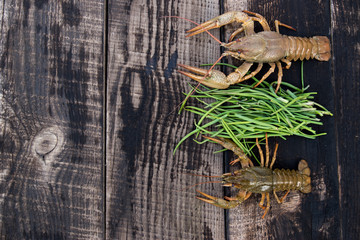 crayfish caught in river on wooden board with fresh green onion