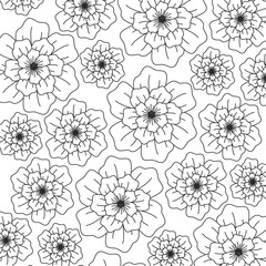 beautiful flowers background, black and white design. vector illustration