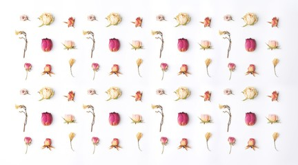 Floral composition. Creative layout made with pink and violet flowers isolated on white background. Colorful pattern with roses, flower buds. flat lay, top view Pastel colors. trendy minimal concept.
