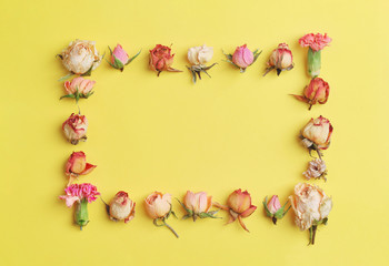Floral composition. Creative layout made with pink and violet flowers on bright yellow background. Square frame with white roses, flower buds. flat lay, top view Pastel colors. trendy minimal concept.