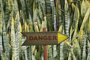 Danger sign on jungle plant background