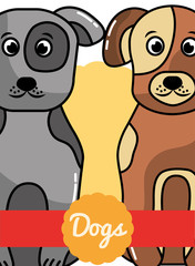 cute gray and brown animal dogs poster vector illustration