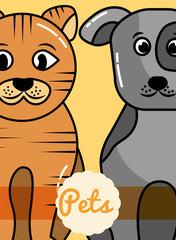 pets dog and cat mammals domestic friends card vector illustration