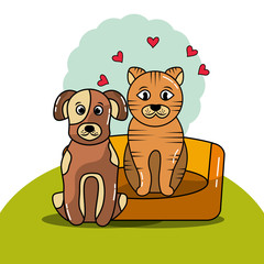 pet cat and dog with bed cushion vector illustration