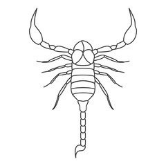 Scorpion icon. Simple element illustration. Scorpion symbol design from Insect collection set. Can be used in web and mobile
