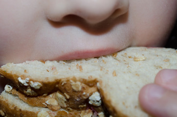 Young unidentifiable child eating wholegrain bread sandwich. Up close image of child enjoying lunch.