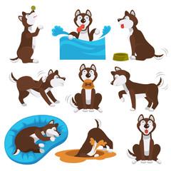 Husky dog cartoon pet playing or training
