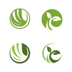 ecology circle nature logotype modern icon illustration