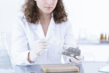Chemist woman analysing herbs