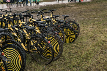 Yellow-black bicycles at the summer music festival