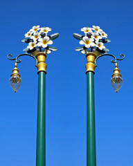 Lamp posts plumeria beautiful blue sky in the background.