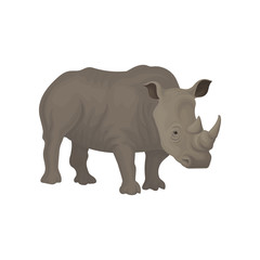 Rhinoceros wild african animal vector Illustration on a white background