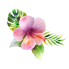 Tropical plants with hibiscus.