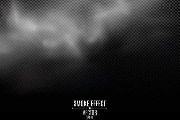Thick smoke on a transparent dark background. Light mist. Smoke from the fire. Thick cloud. Steam on top. Smoke effect for your design. Vector illustration