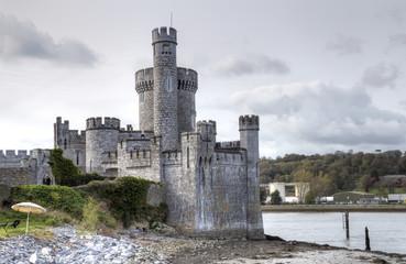 Fotobehang Kasteel Blackrock castle observatory, Ireland