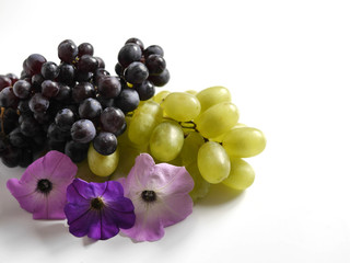 Black and green grapes, lilac flowers isolated on a white background.