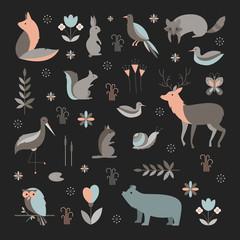 Mammals vector collection