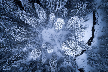 Aerial view of a river running through a winter forest, Zauchensee, Salzburg, Austria
