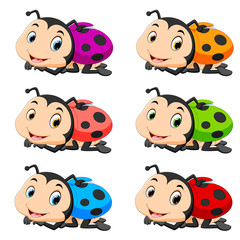 Ladybug with different facial expressions and different color