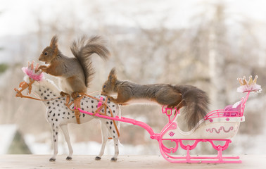 red squirrel are sitting on a royal horse and sleigh