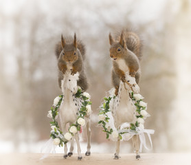red squirrel standing on horses with flowers