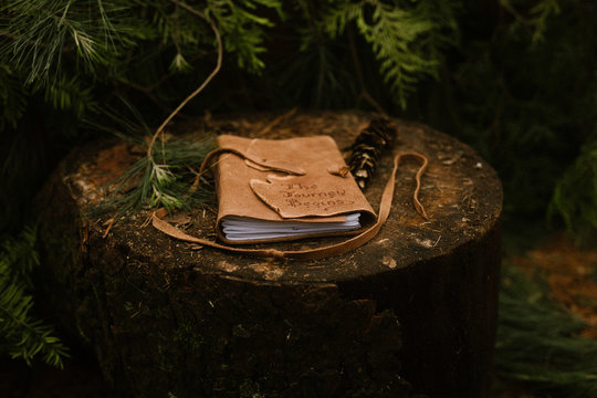 leather joural outside on a log