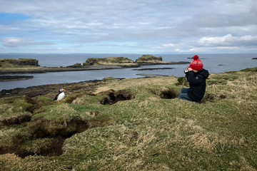 Young boy taking a photo of a puffin on the Scottish Island of Lunga